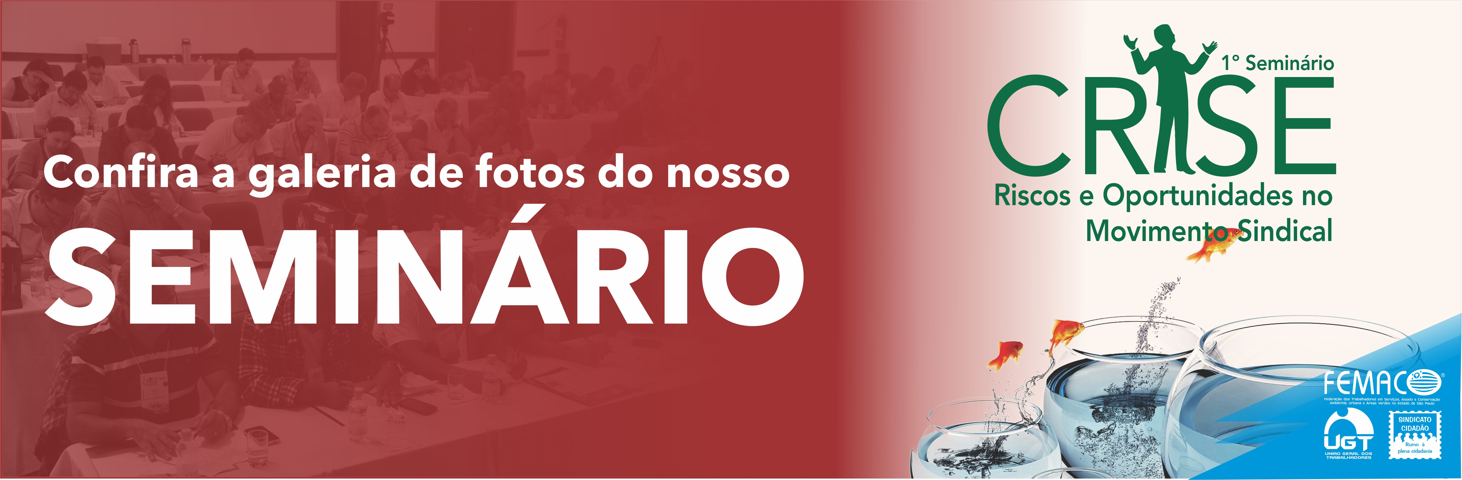 Banner Seminário Crise